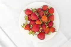 Φράουλες σε ένα άσπρο πιάτο Στοκ Εικόνες