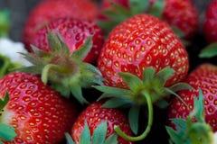 Φράουλες σε ένα ξύλινο κολόβωμα στοκ εικόνα με δικαίωμα ελεύθερης χρήσης