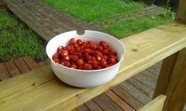 Φράουλες σε ένα πιάτο στοκ φωτογραφία με δικαίωμα ελεύθερης χρήσης