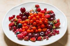 Φράουλες, σμέουρα, κόκκινες και μαύρες σταφίδες, κεράσι, μούρα σορβιών σε ένα πιάτο Στοκ εικόνες με δικαίωμα ελεύθερης χρήσης