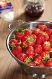 φράουλες τρυπητών Στοκ εικόνες με δικαίωμα ελεύθερης χρήσης