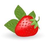 Φράουλα Γλυκά φρούτα που απομονώνονται σε ένα άσπρο υπόβαθρο Απεικόνιση αποθεμάτων