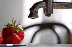 Φράουλα λεπτομερώς Στοκ εικόνα με δικαίωμα ελεύθερης χρήσης