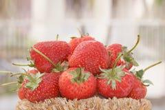 Φράουλα, εστίαση στην ομάδα φραουλών στο καλάθι σε φυσικό στοκ φωτογραφίες