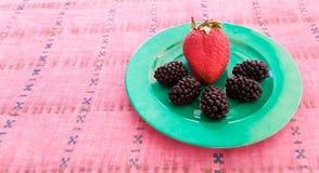 Φράουλα και μαύρες μουριές Στοκ εικόνα με δικαίωμα ελεύθερης χρήσης