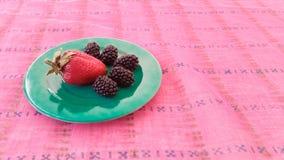 Φράουλα και μαύρες μουριές Στοκ εικόνες με δικαίωμα ελεύθερης χρήσης