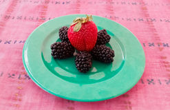 Φράουλα και μαύρες μουριές Στοκ φωτογραφία με δικαίωμα ελεύθερης χρήσης