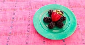 Φράουλα και μαύρες μουριές Στοκ Φωτογραφία