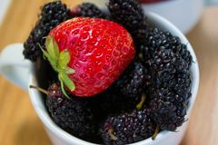 Φράουλα και πλήρες φλυτζάνι των μουριών, οριζόντιες Στοκ φωτογραφίες με δικαίωμα ελεύθερης χρήσης