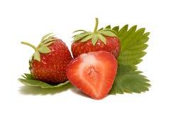 Φράουλα με τα φύλλα σε ένα άσπρο υπόβαθρο Στοκ εικόνες με δικαίωμα ελεύθερης χρήσης