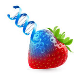 Φράουλα με το ΓΤΟ Στοκ Εικόνες