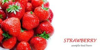 Φράουλα με το πράσινο φύλλο Στοκ Εικόνες
