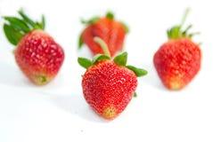 Φράουλα πέρα από την άσπρη ανασκόπηση στοκ εικόνα