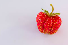 Φράουλα που απομονώνεται στο άσπρο υπόβαθρο, κόκκινη φυσική φράουλα, υγιή τρόφιμα Στοκ φωτογραφία με δικαίωμα ελεύθερης χρήσης