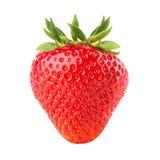 Φράουλα που απομονώνεται στο άσπρο υπόβαθρο Στοκ εικόνα με δικαίωμα ελεύθερης χρήσης