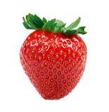 Φράουλα που απομονώνεται στο λευκό Στοκ Εικόνα