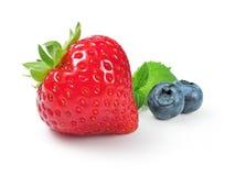 Φράουλα, που απομονώνεται φρέσκια στο λευκό Στοκ εικόνες με δικαίωμα ελεύθερης χρήσης