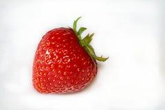 Φράουλα που αφήνεται Στοκ Εικόνα