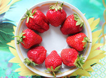 Φράουλα σε ένα πιάτο Στοκ Εικόνα