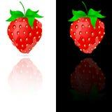 Φράουλα σε γραπτό Στοκ Εικόνες