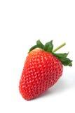 Φράουλα στην άσπρη ανασκόπηση Στοκ Φωτογραφία