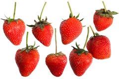 Φράουλα στην άσπρη ανασκόπηση στοκ φωτογραφίες με δικαίωμα ελεύθερης χρήσης