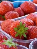 Φράουλα στην αγορά Στοκ Φωτογραφία