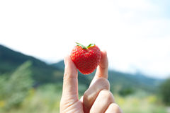 Φράουλα στη μορφή καρδιών Στοκ φωτογραφίες με δικαίωμα ελεύθερης χρήσης