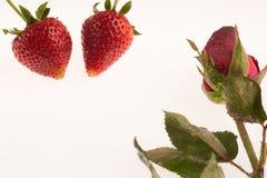Φράουλα στο άσπρο υπόβαθρο Στοκ Εικόνα