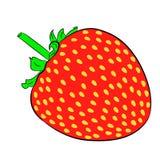 Φράουλα στο λευκό των απεικονίσεων Στοκ Φωτογραφίες