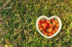 Φράουλα στο κιβώτιο Στοκ εικόνες με δικαίωμα ελεύθερης χρήσης