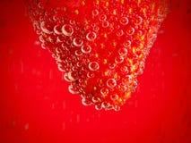 Φράουλα στο κόκκινο υπόβαθρο με τις φυσαλίδες Στοκ Φωτογραφία