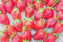 Φράουλα στο ξηρό ξύλο Στοκ Εικόνα