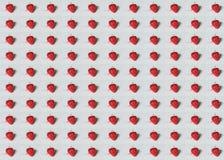Φράουλα σχεδίων Στοκ φωτογραφία με δικαίωμα ελεύθερης χρήσης