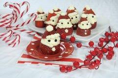 Φράουλα Santas διακοπών Χριστουγέννων Στοκ Εικόνες