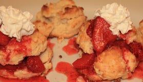 Φράουλα shortcake 2 Στοκ φωτογραφία με δικαίωμα ελεύθερης χρήσης