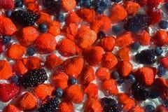Φράουλες, βακκίνια, βατόμουρα και σμέουρα στην κρέμα, η οποία mades υπόβαθρο Στοκ Φωτογραφίες
