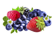 Φράουλες, βατόμουρα, βακκίνια, βατόμουρα, raspberri Στοκ Φωτογραφίες