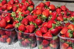 Φράουλες για την πώληση στοκ φωτογραφίες