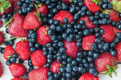 Φράουλες και βακκίνια στοκ εικόνες με δικαίωμα ελεύθερης χρήσης