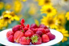 Φράουλες και σμέουρα σε ένα άσπρο πιάτο σε ένα κίτρινο χρώμα υποβάθρου Στοκ εικόνες με δικαίωμα ελεύθερης χρήσης