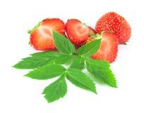 Φράουλες με τα φύλλα Στοκ φωτογραφία με δικαίωμα ελεύθερης χρήσης