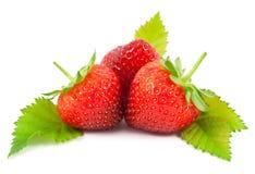 Φράουλες με τα φύλλα Στοκ εικόνα με δικαίωμα ελεύθερης χρήσης