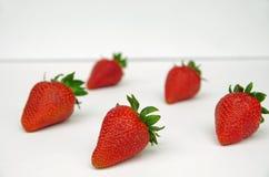 Φράουλες με τους πράσινους μίσχους Στοκ εικόνες με δικαίωμα ελεύθερης χρήσης