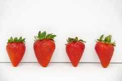Φράουλες με τους πράσινους μίσχους Στοκ Εικόνες