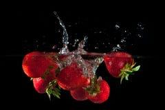 Φράουλες που καταβρέχουν στο ύδωρ Στοκ εικόνα με δικαίωμα ελεύθερης χρήσης