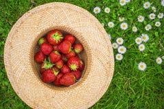 Φράουλες σε ένα καπέλο στοκ φωτογραφίες με δικαίωμα ελεύθερης χρήσης