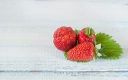 Φράουλες σε ένα πράσινο φύλλο πρόσκληση συγχαρητηρίων καρτών ανασκόπησης διάστημα αντιγράφων Στοκ Φωτογραφίες