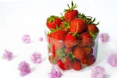 Φράουλες σε ένα φλυτζάνι γυαλιού και ρόδινα λουλούδια γύρω άσπρο backg Στοκ Εικόνες
