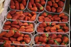 Φράουλες σε μια αγορά αγροτών Στοκ Φωτογραφίες
